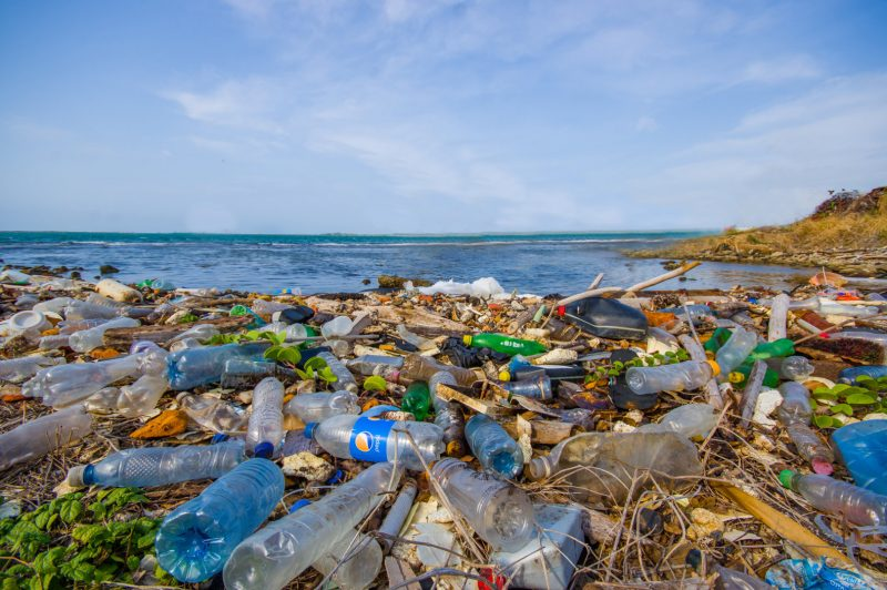 drowning in plastic - Impact Recycling